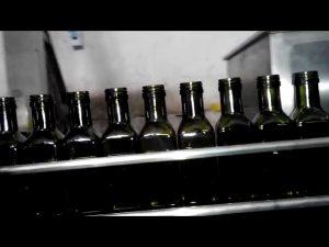 πλήρης αυτόματη πλήρωση μπουκαλιών λαδιού γραμμικού 6 ακροφυσίων ελαιολάδου